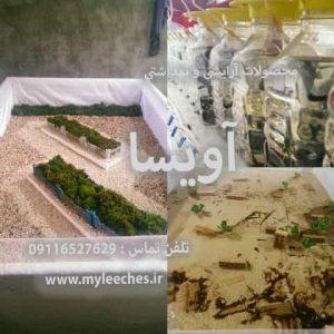 شرکت پخش زالو اصفهان